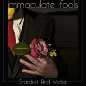 front cover of immaculate fools single stardust and water