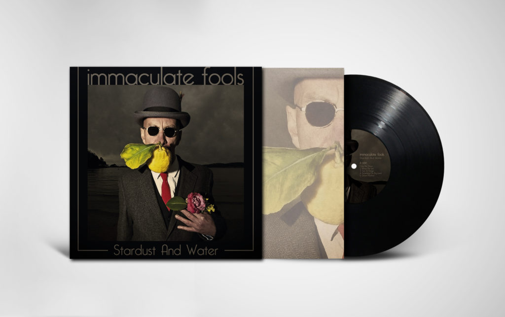 view of Immaculate Fools album Stardust and Water showing insert